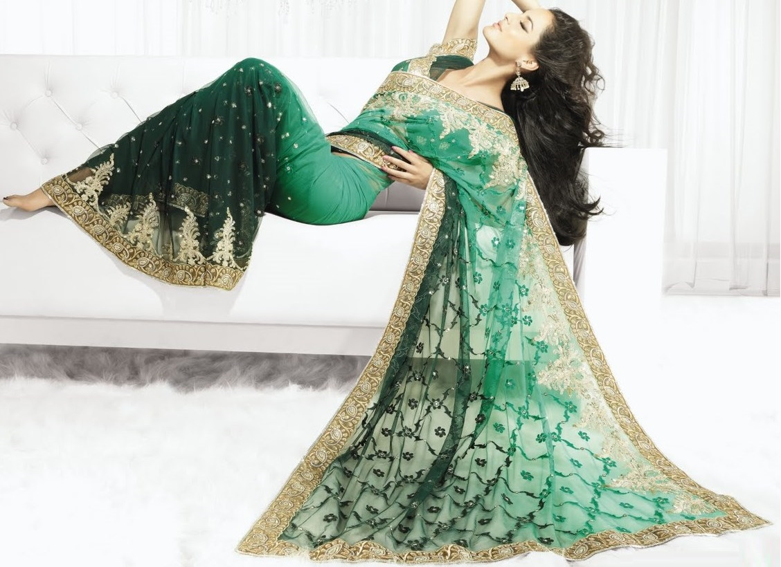 stylish-indian-designer-sarees-2014-collection