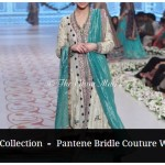 Bridal-Dresses-collection-by-Nida-Azwer-Panteen-Bridal-Couture-Week-2014 (13)