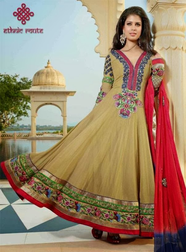 Designer-Anarkali-Suits-2014 (6)