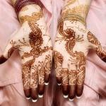 Latest-Bridal-Mehndi-Designs-2014 (24)