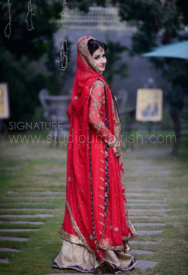 Red Bridal Dress with Skin and Purple Finishing