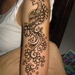Best-Peacock-Mehndi-Designs-2014 (14)