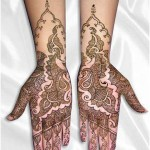 Best-Peacock-Mehndi-Designs-2014 (16)