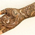 Best-Peacock-Mehndi-Designs-2014 (17)