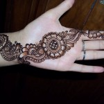 Best-Peacock-Mehndi-Designs-2014 (19)