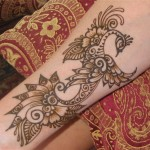 Best-Peacock-Mehndi-Designs-2014 (2)