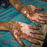Best-Peacock-Mehndi-Designs-2014 (21)