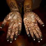 Best-Peacock-Mehndi-Designs-2014 (22)