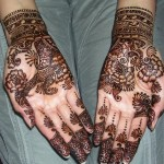 Best-Peacock-Mehndi-Designs-2014 (23)