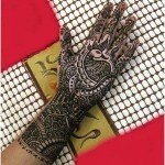 Best-Peacock-Mehndi-Designs-2014 (26)