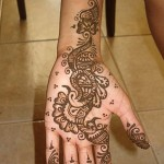 Best-Peacock-Mehndi-Designs-2014 (32)