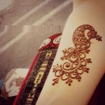 Best-Peacock-Mehndi-Designs-2014 (6)