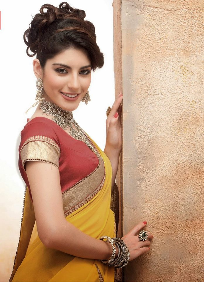 Diwali-Dhamaka-Saree-Collection-2014-2015 (4)