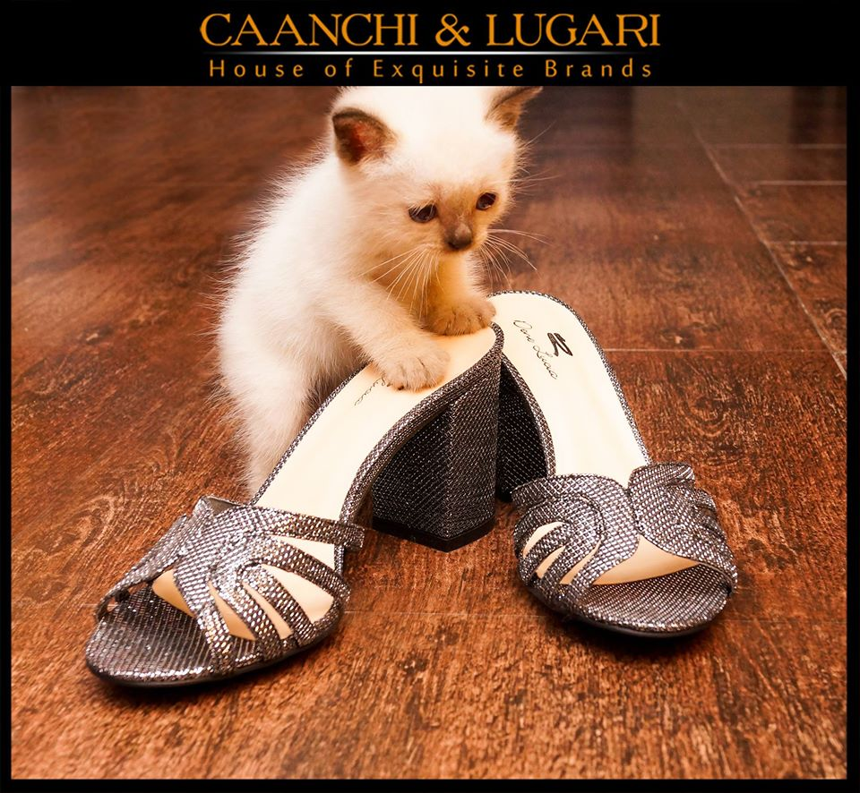 Caanchi-&-Lugari-Collection-2015-2016 (17)
