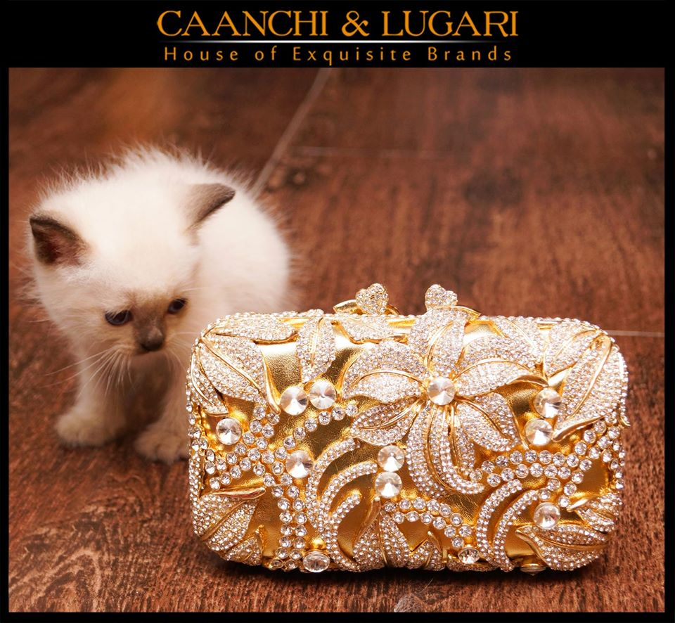 Caanchi-&-Lugari-Collection-2015-2016 (24)