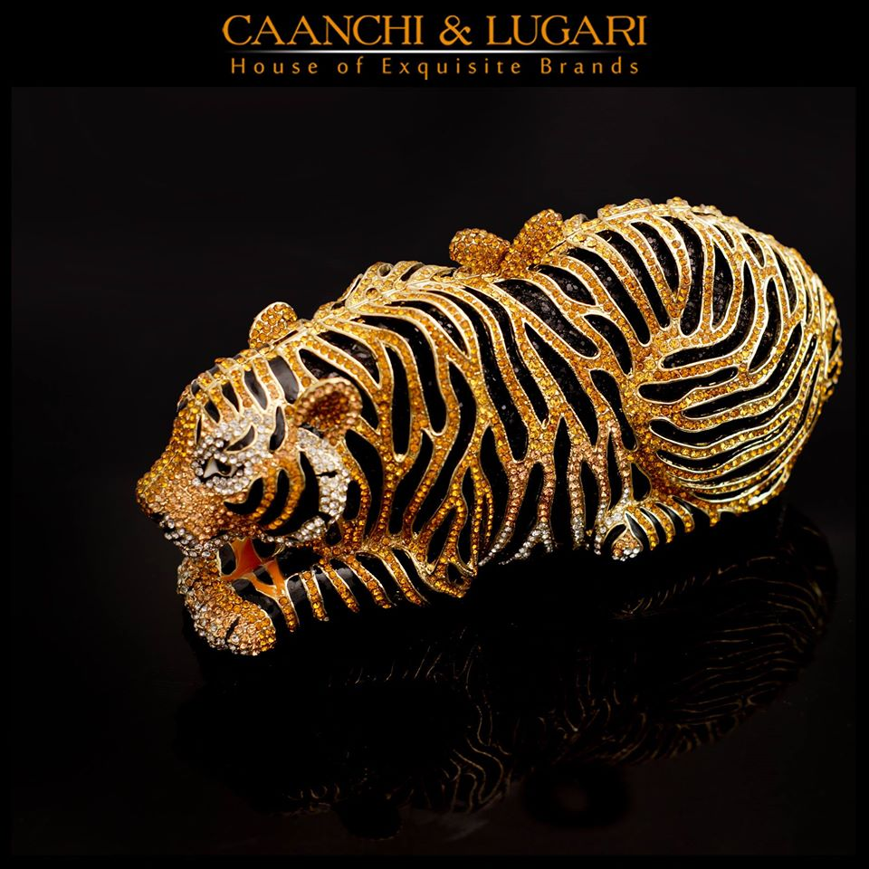 Caanchi-&-Lugari-Collection-2015-2016 (28)