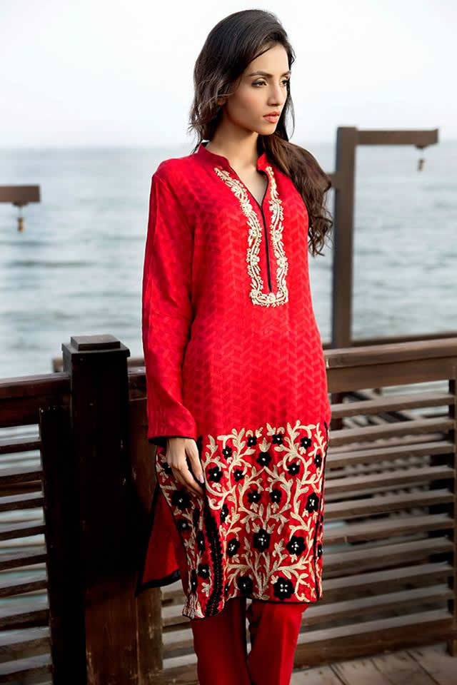 Zainab-Hasan-Eid-Collection-2015-2016 (14)