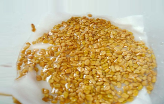 soaked fenugreek seeds for eyebrows thickening