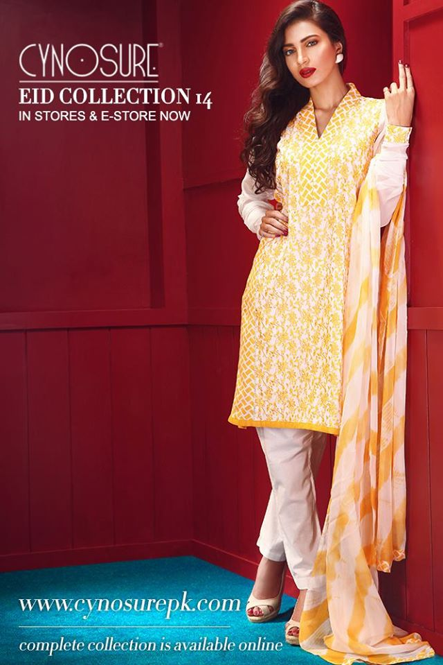 Cynosure-Eid-Collection-2014 (11)
