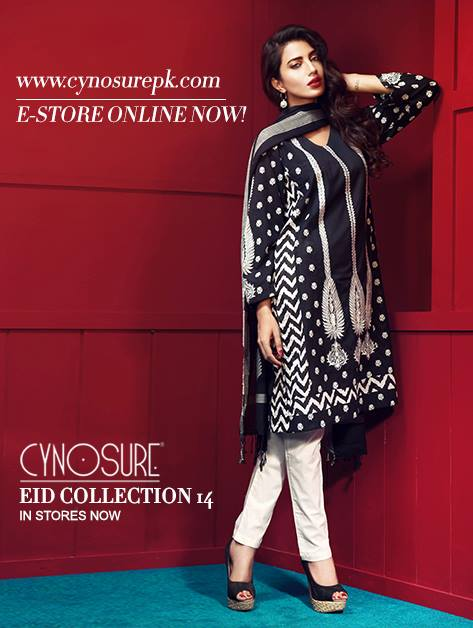 Cynosure-Eid-Collection-2014 (22)