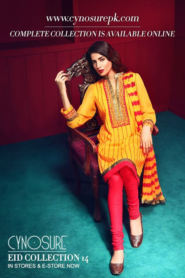 Cynosure-Eid-Collection-2014 (9)