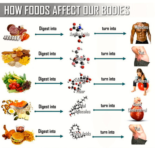 Weight-Loss-Tips (2)