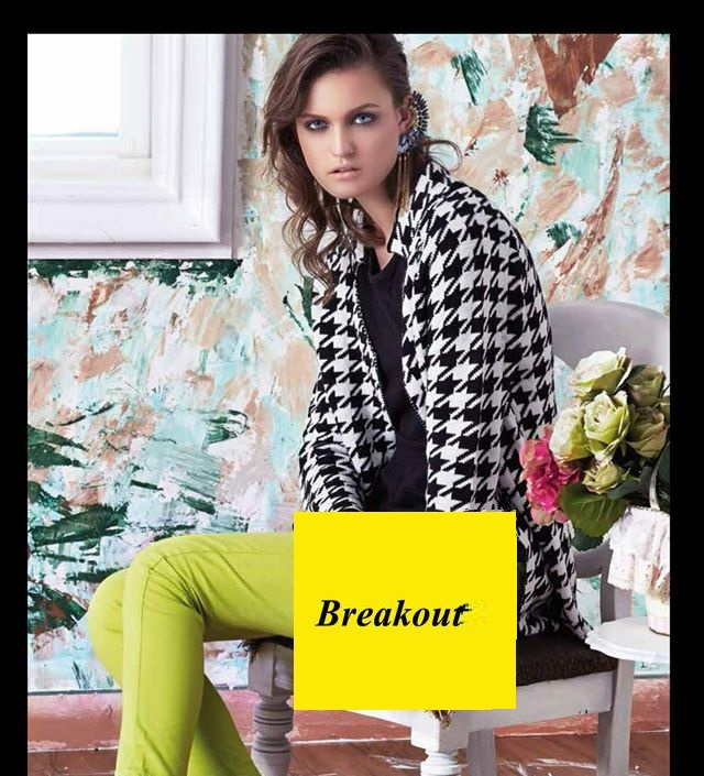 Breakout-winter-dresses-collection-for-women (2)