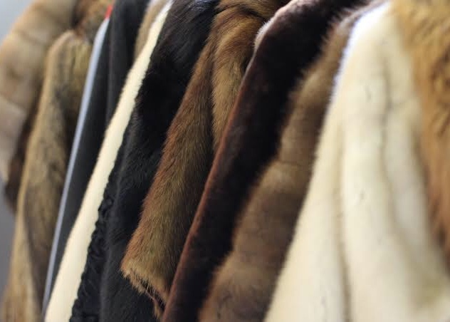 Fur industry under threat