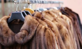 Is Real Fur Under The Biggest Threat Of It's History?